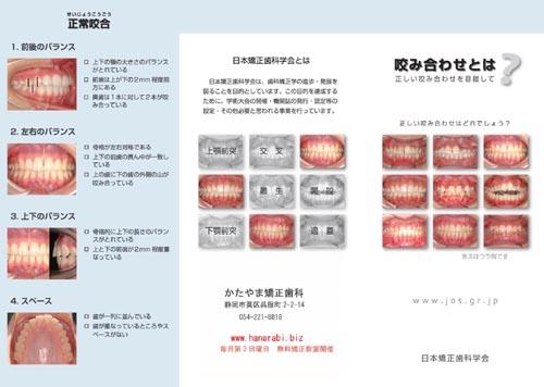 2012 04日矯パンフ原稿1 A4 s.jpg